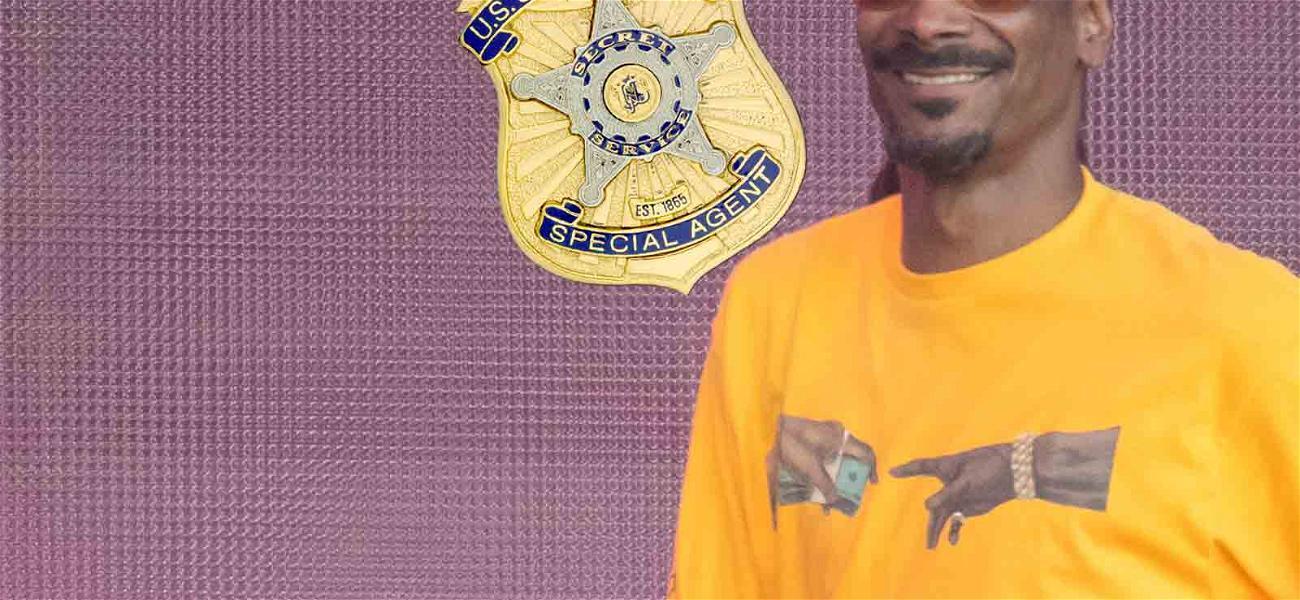 Snoop Dogg on Secret Service's Radar After Trump Album Cover