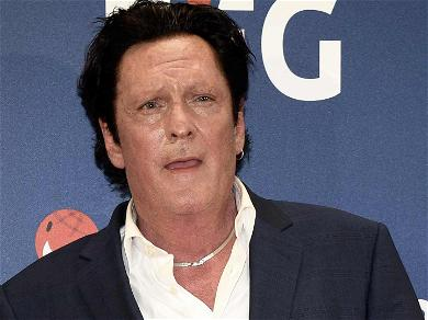 Michael Madsen Busted for DUI After Crashing Into a Pole