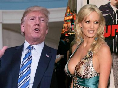 Donald Trump's Lawyers Ask for More Time in Stormy Daniels Case