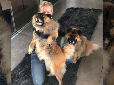 Chelsea Handler Adopts Two Adorable Puppies After Her Dog's Death