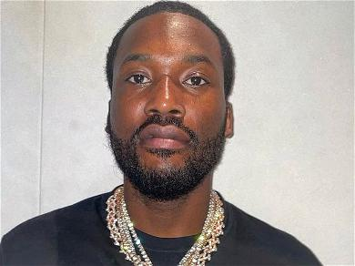 Meek Mill Gets Clowned After Asking, 'What Is A PH Balance?'