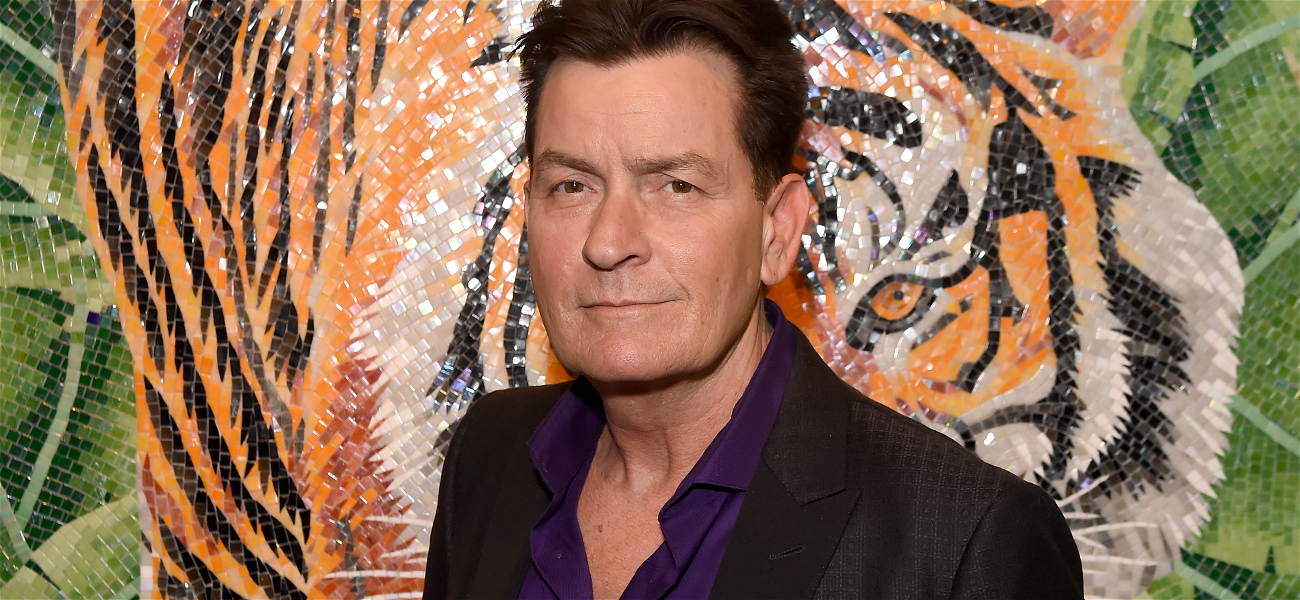 Charlie Sheen Vows to Protect Kids from Brooke Mueller's 'Haphazard Choices'