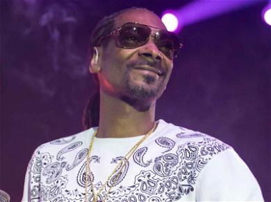 Snoop Dogg Sues Contractor for $500k for Allegedly Screwing Up Mansion Remodel
