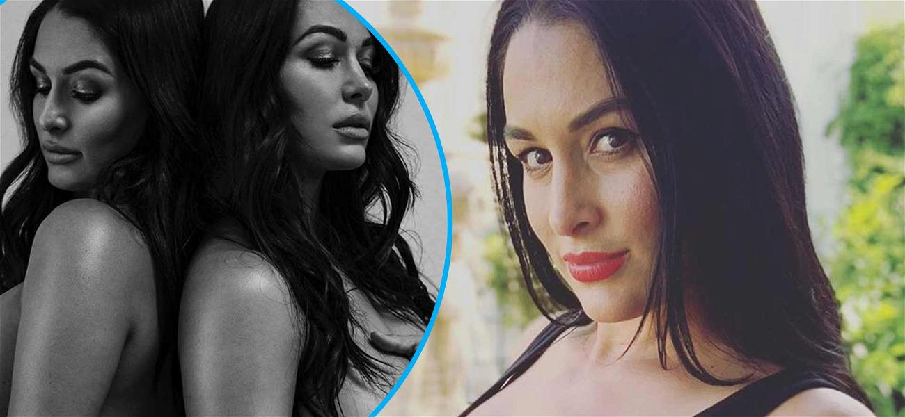 Nikki Bella Shares Tasteful Nude Pregnancy Pic With Twin Brie