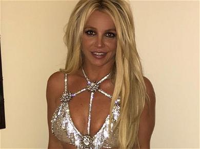 Britney Spears' Laywer Likens Singer's Mental Capacity To Comatose Patient