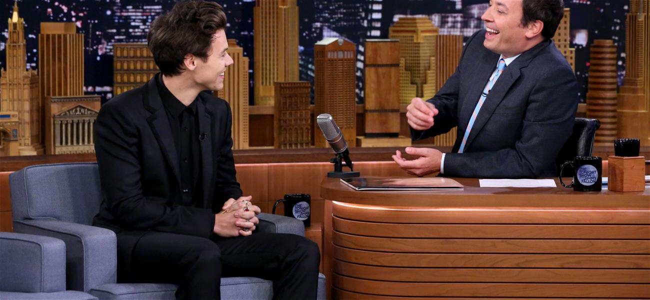 Will Harry Styles Cancel His Tour?