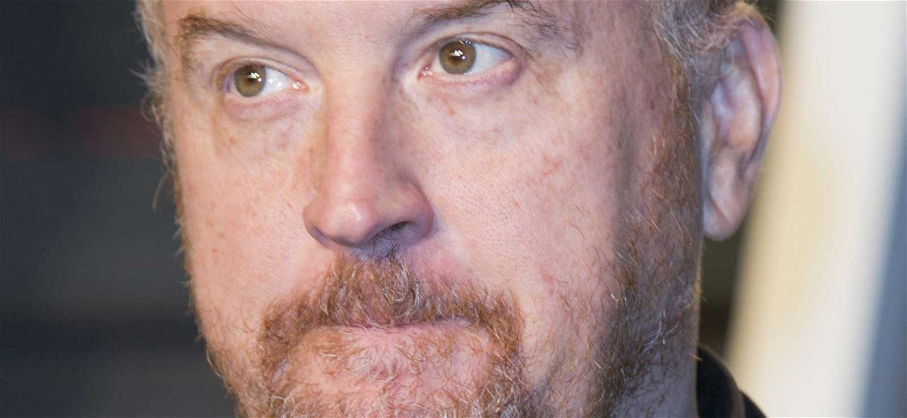 Louis C.K. Netflix Special and Movie Release Canceled in Scandal Fallout