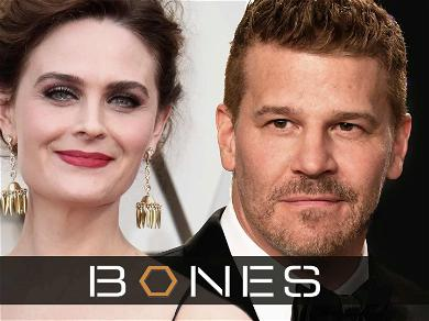 Emily Deschanel, David Boreanaz and 'Bones' Producers Score $179 Million Judgment From Fox