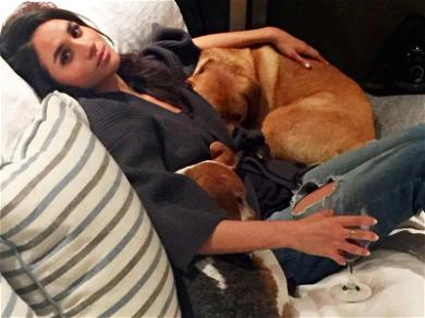 Meghan Markle Permanently Leaves Behind One of Her Beloved Dogs In Move to UK