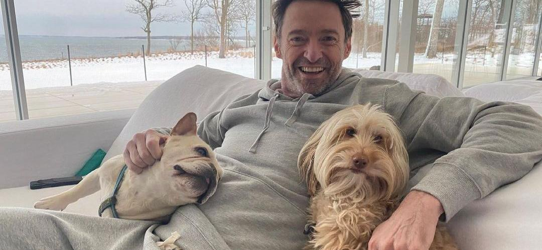 5 Incredible Celebrities Who Are Dog Lovers!