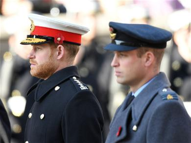 William and Harry: The Divide Keeps Getting Bigger