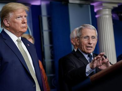 Dr. Anthony Fauci Did a Facepalm During Trump's Briefing, What Does This and Other Body Language Tell Us?