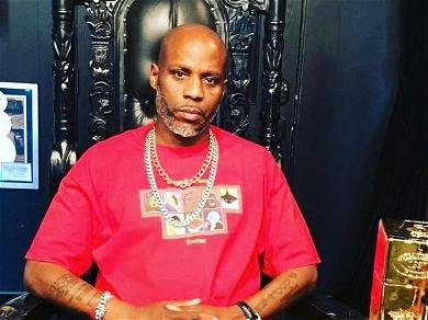 DMX's Final Public Interview Will Air This Month