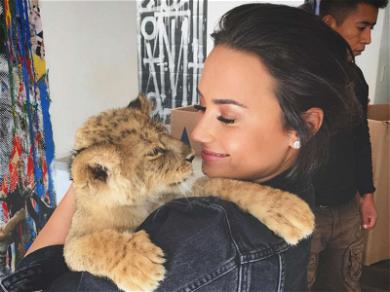 Demi Lovato With Lions and Baby Tigers, Oh My!