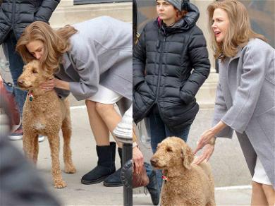 Nicole Kidman Has a Ruff Time on 'Goldfinch' Set with Doggo