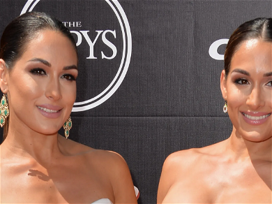 Brie Bella Shares Adorable Picture Of Her Son Playing With Nikki's, 'BFF's for Life'