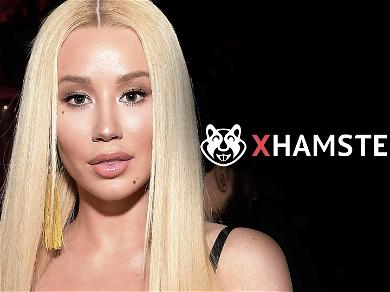 Porn Co. Defends Iggy Azalea in Nude Photo Leak Scandal: It's a 'Violation of Iggy's Rights'