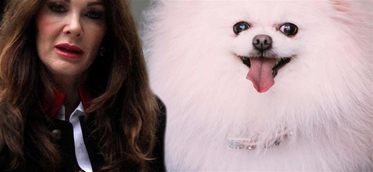 Lisa Vanderpump's Dog Dies, Husband Tried to Save With CPR