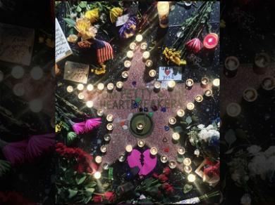 Tom Petty's Walk of Fame Star Becomes Illuminated Vigil