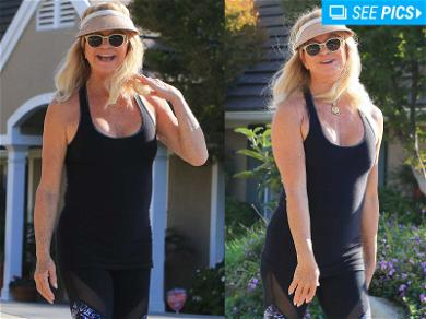 Goldie Hawn Goes for an 'L.A. Hike'
