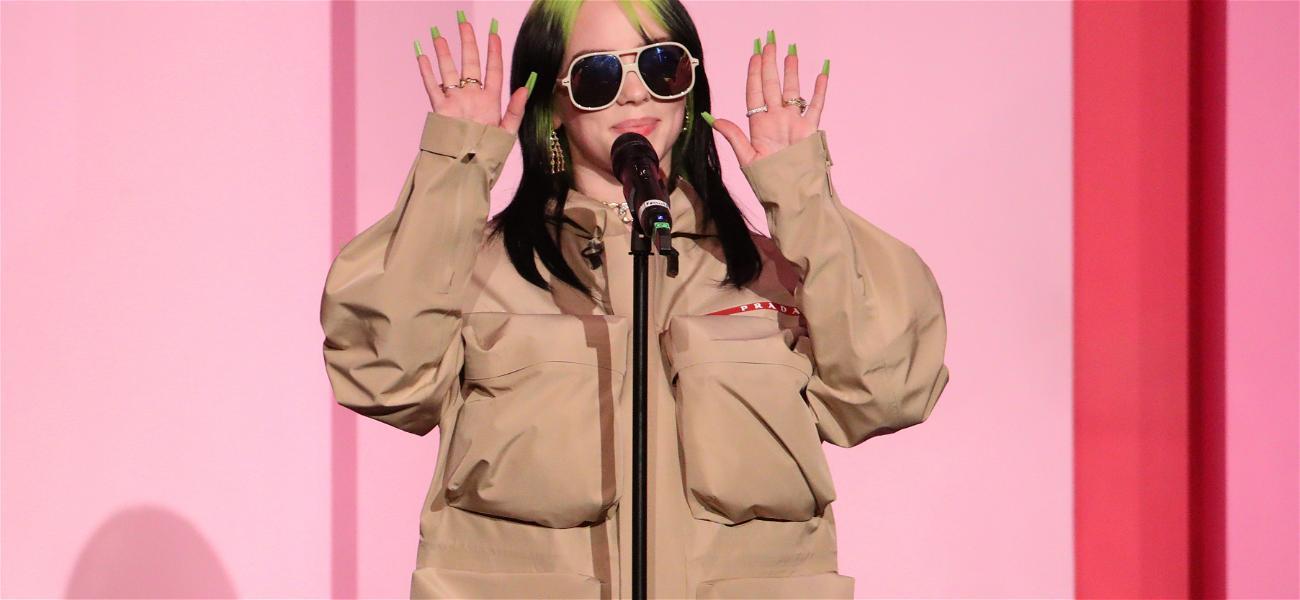 Billie Eilish Begs Fans to Stop