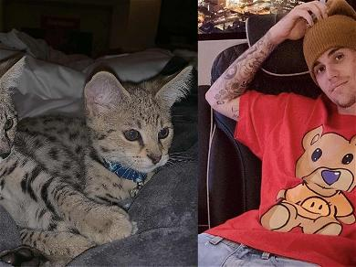 Justin Bieber's Living That 'Cat-Dad' Life With Sushi & Tuna