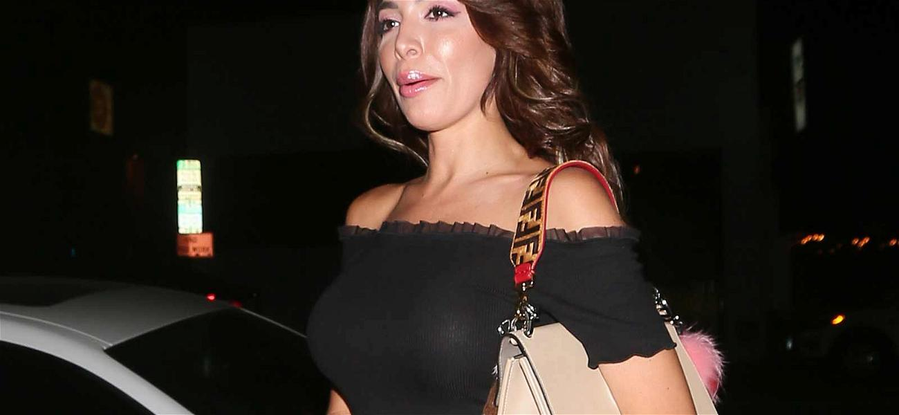 Farrah Abraham Pleads Not Guilty to Charges Stemming from Hotel Arrest