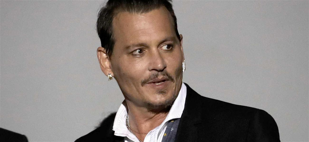 Johnny Depp Sued for $350,000 Over Unpaid Legal Bill