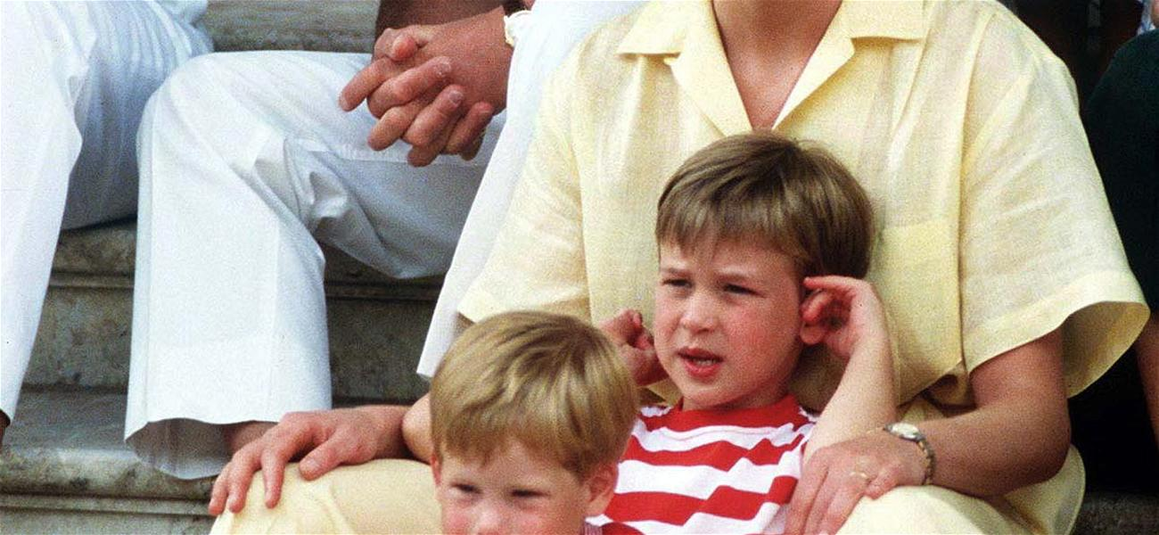 How Did Prince William and Prince Harry Find Out About Their Father Cheating on Their Mother With Camilla?