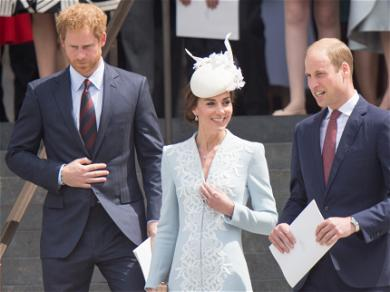 Prince William Reaching Out To Harry To Reunite Before Unveiling A Statue of Diana