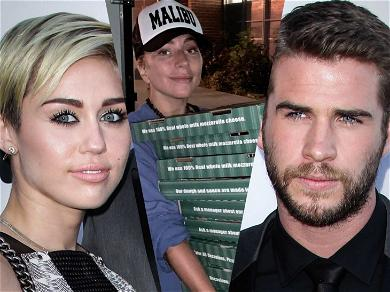Lady Gaga, Miley Cyrus, Liam Hemsworth and More Rally Together for Woolsey Fire Victims