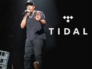 NYPD Investigates Assault at Jay-Z's 'TIDAL X' Charity Event, Security Guard Bloodied