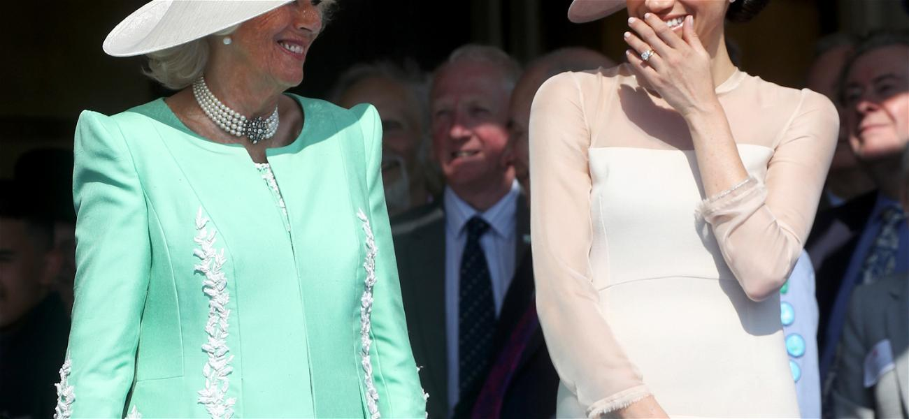 Camilla Parker Bowles Might Have Supported Prince Harry And Meghan Markle's Royal Exit