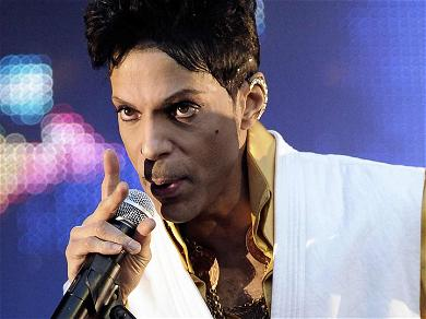 Prince's Family Fighting to Limit Administrators' Control Over Late Singer's Estate, Claim Millions Have Gone to Waste