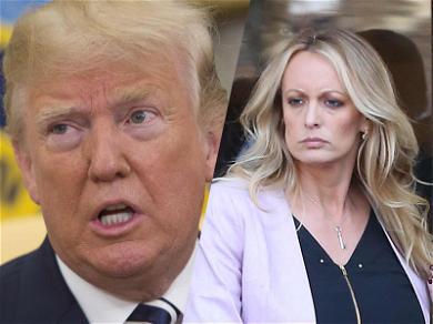 Stormy Daniels Sues Donald Trump for Defamation