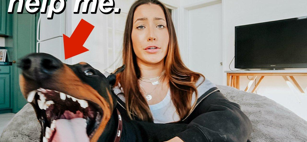 YouTube Star Accidentally Uploads Video Of Herself Abusing Her Dog, LAPD Investigating