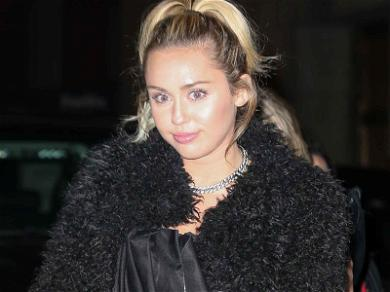 Miley Cyrus Screws the Pooch in Dog Attack Case, Accused of Perjury