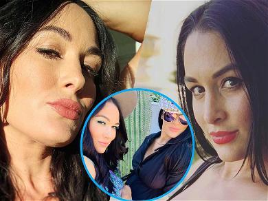 Brie & Nikki Bella Bump Baby Bumps For Sweet 8-Month Selfie