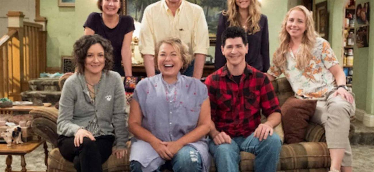 ABC Brings Back Roseanne's Family Without Roseanne: Meet 'The Conners'
