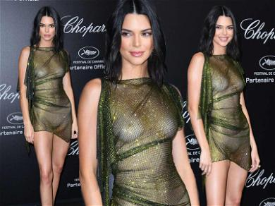 Kendall Jenner Frees Her Nips On the Cannes Carpet