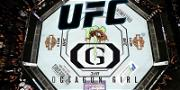 UFC 'Octagon Girls' Going Full Contact with Signature MMA Equipment