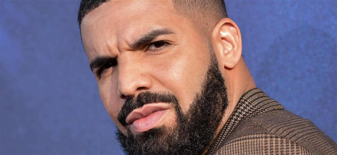 Drake Sued by Female Fan For Sustaining Serious Brain Injury at His New York Concert