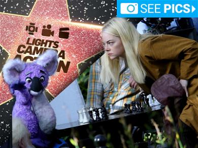 Checkmate, Mate! Emma Stone Battles a Koala in Chess