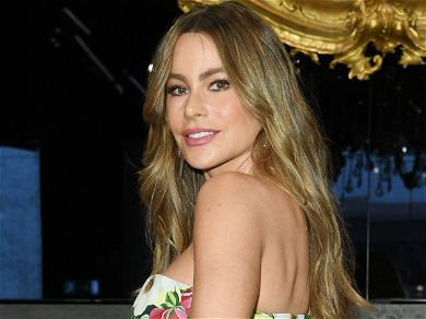 Sofia Vergara's Ex-Fiancé Nick Loeb Served Her With Legal Papers The Day Before Thanksgiving