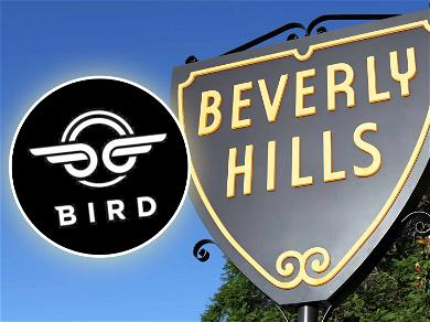 Paraplegic Woman Files Class Action Lawsuit Against Bird Scooters and City of Beverly Hills for Discriminating Against the Disabled