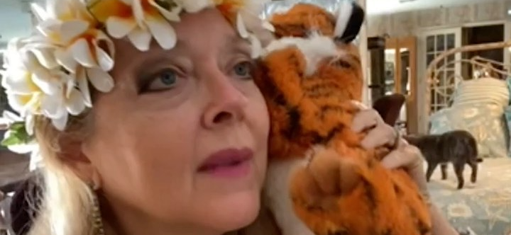 Carole Baskin Speaks Out After Tiger Attack At Big Cat Rescue; Staffer Nearly Loses Arm