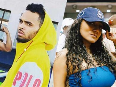 Chris Brown's Baby Mama is Worried Over Fans Shouting At & Harassing Daughter Royalty