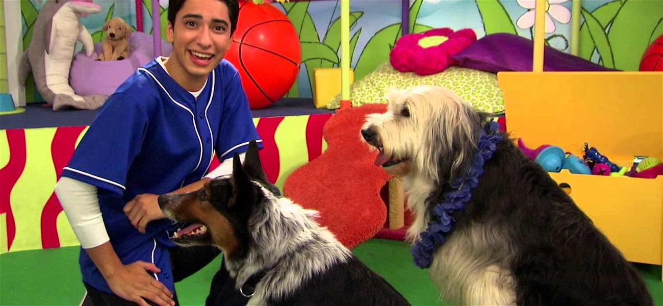Animals Trainers Sue Over Talent Dogfight on Nickelodeon's 'Mutt & Stuff'
