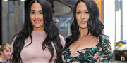 'The Bella Twins' Share First Photos Of Their Newborn Baby Boys — See The Precious Pictures!!