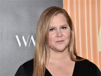 Amy Schumer Lives With Her Husband and Her Ex